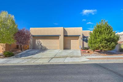 Albuquerque Single Family Home For Sale: 7327 Enchanted Sky Lane NE