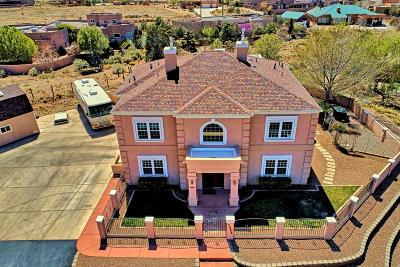 Albuquerque Single Family Home For Sale: 8900 Eagle Rock Avenue NE