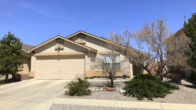 Albuquerque Single Family Home For Sale: 2504 Meadow Gate Trail SW