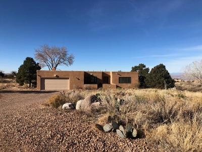Albuquerque NM Single Family Home For Sale: $500,000