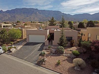 Sandia Heights Single Family Home For Sale: 2313 Calle De Rafael NE