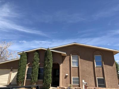 Albuquerque Single Family Home For Sale: 5120 Spinning Wheel Road NW