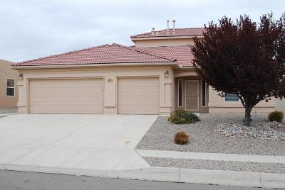 rio rancho Single Family Home For Sale: 2405 Pedragal Avenue SE