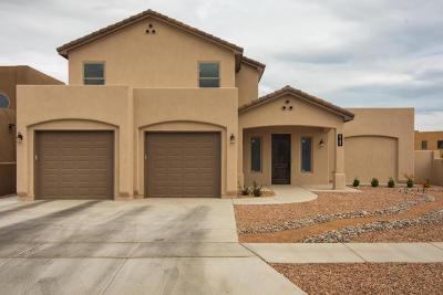 Albuquerque Single Family Home For Sale: 6100 Tesuque Drive NW