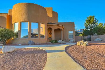 Albuquerque Single Family Home For Sale: 8312 Visalia Way NE