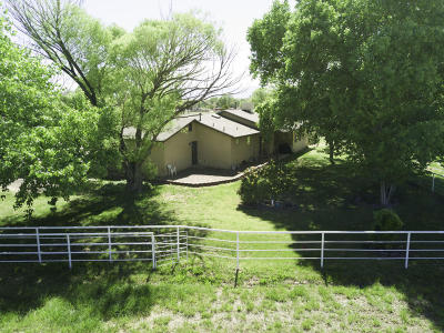 Valencia County Single Family Home For Sale: 1260 Dearing Lane
