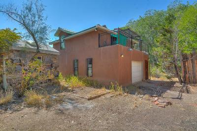 Albuquerque Single Family Home For Sale: 2408 Mountain NW