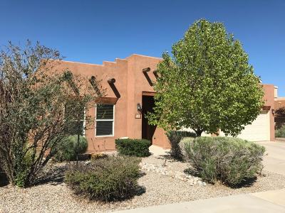 Albuquerque Single Family Home For Sale: 7143 Glyndon Trail NW