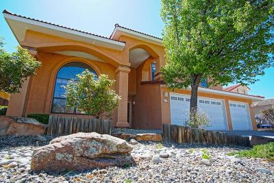 Albuquerque Single Family Home For Sale: 9508 Allande Road NE