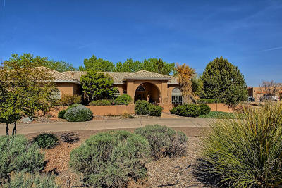 Albuquerque Single Family Home For Sale: 9509 Dancing River Drive NW