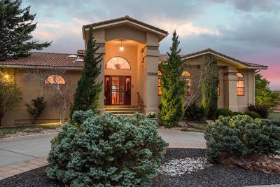Albuquerque Single Family Home For Sale: 14016 La Mesita Road NE