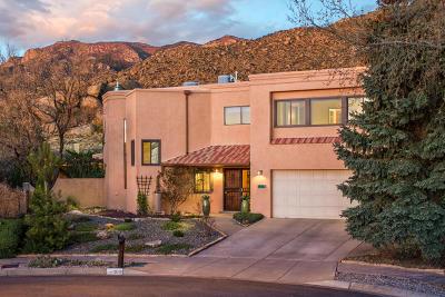 Albuquerque Single Family Home For Sale: 918 Piedra Vista Road NE