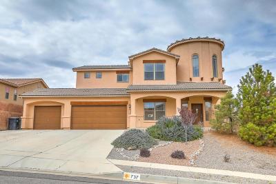 Albuquerque, Rio Rancho Single Family Home For Sale: 737 Loma Pinon Loop NE