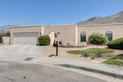 Albuquerque Single Family Home For Sale: 2710 Compa Court NE