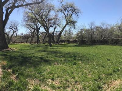 Bernalillo County Residential Lots & Land For Sale: 3832 Elfego NW