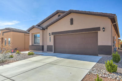 Albuquerque Single Family Home For Sale: 8500 Mock Heather Road NW