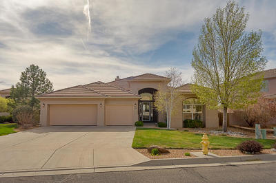 Albuquerque Single Family Home For Sale: 5919 Silver Leaf Trail NE