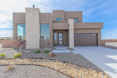 Albuquerque Single Family Home For Sale: 6528 Metz Road NW