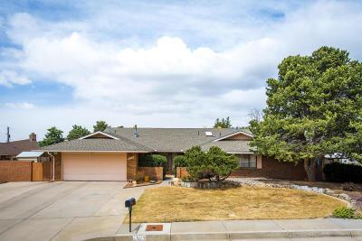 Bernalillo County Single Family Home For Sale: 1529 Bush Court SE