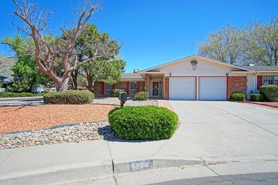 Single Family Home For Sale: 6220 Northland Avenue NE