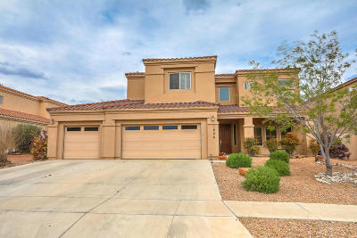 Rio Rancho Single Family Home For Sale: 1606 Western Hills Drive SE