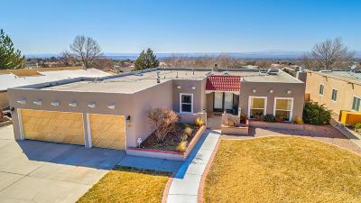 Albuquerque Single Family Home For Sale: 2701 Casa Del Norte Court NE