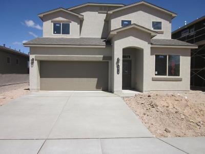 Albuquerque NM Single Family Home For Sale: $296,625