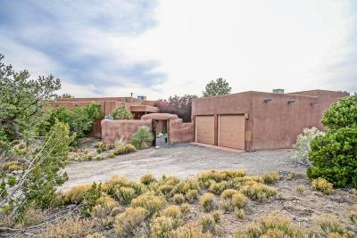 Placitas Single Family Home For Sale: 167 Camino De Las Huertas