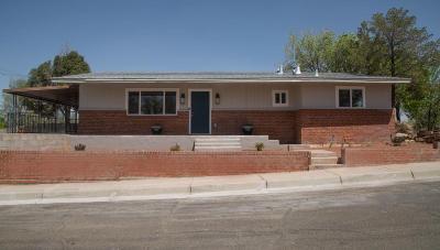 Albuquerque Single Family Home For Sale: 1643 Columbia Drive SE