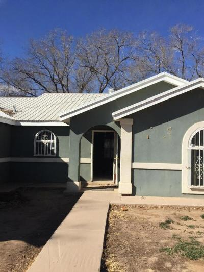 Albuquerque Single Family Home For Sale: 7515 Isleta Boulevard SW