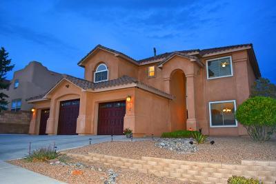 Albuquerque Single Family Home For Sale: 9812 Buckeye Street NW