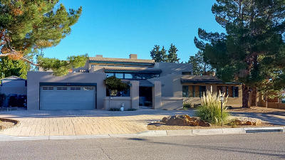 Rio Rancho Single Family Home For Sale: 3407 St Andrews Drive SE