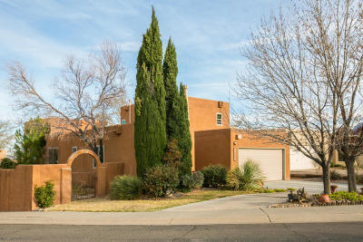 Albuquerque Single Family Home For Sale: 13059 Cambridge Place NE