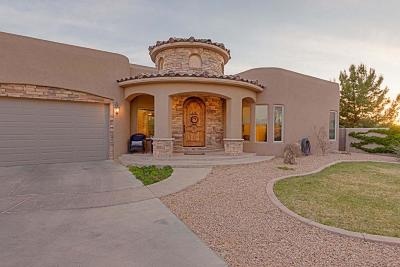Albuquerque Single Family Home For Sale: 1530 Rancho Guadalupe Trail NW