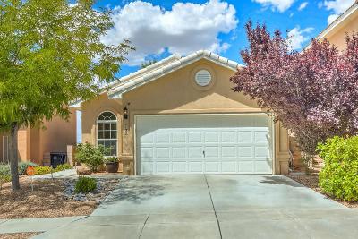 Albuquerque Single Family Home For Sale: 7135 Boxwood Avenue NE