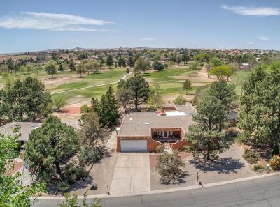Albuquerque Single Family Home For Sale: 9923 Columbus Circle NW