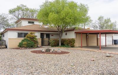Albuquerque Single Family Home For Sale: 2721 Dallas Street NE