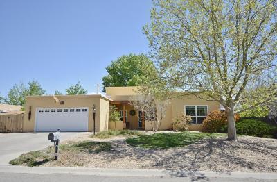 Rio Rancho Single Family Home For Sale: 202 Montana Wells Road NE