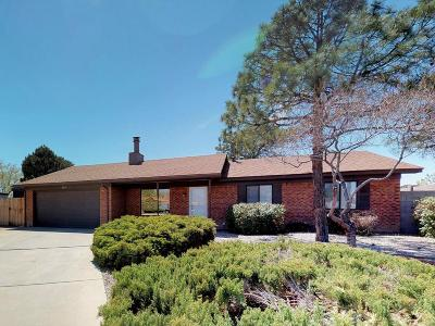 Albuquerque Single Family Home For Sale: 4616 Rainbow Street NW