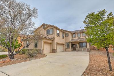 Albuquerque Single Family Home For Sale: 5928 Mesa Viento Road NW