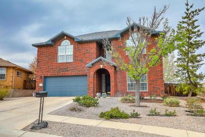 Albuquerque Single Family Home For Sale: 4925 Rio Cebolla Court NW