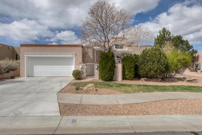 Albuquerque Single Family Home For Sale: 6515 Alpine Trail Street NE