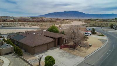 Albuquerque, Rio Rancho Single Family Home For Sale: 2893 Chessman Drive SE