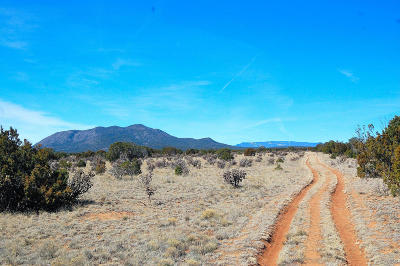 Santa Fe County Farm & Ranch For Sale: San Pedro Mountain Ranch