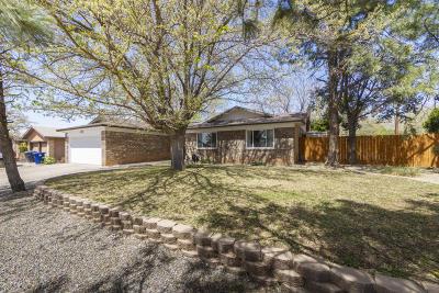 Albuquerque Single Family Home For Sale: 12105 Tivoli Avenue NE