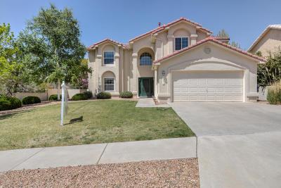 Albuquerque Single Family Home For Sale: 1331 Canyon Rim Drive NE
