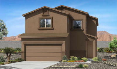 Albuquerque Single Family Home For Sale: 2508 Gold Dust Way SW