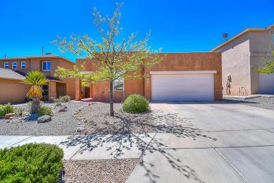 Albuquerque Single Family Home For Sale: 7704 Briar Ridge Avenue NW