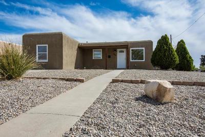 Albuquerque Single Family Home For Sale: 9100 Mescalero Road NE