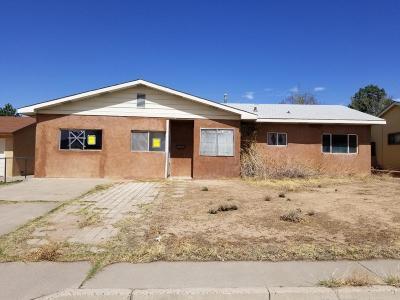 Albuquerque Single Family Home For Sale: 1005 Westerfeld Drive NE